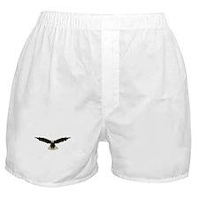Spread Eagle Boxer Shorts