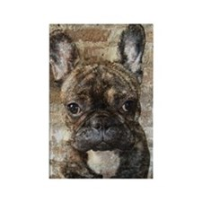 I LUV FRENCHIES Rectangle Magnet
