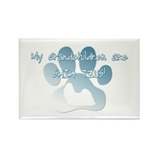 Shih Tzu Grandchildren Rectangle Magnet