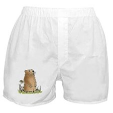 Cute Groundhog Boxer Shorts