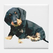 Black and Tan Wire Hair Tile Coaster
