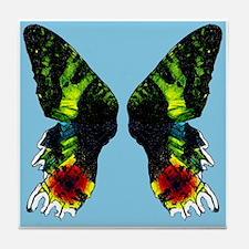 Madagascan Sunset Moth Tile Coaster