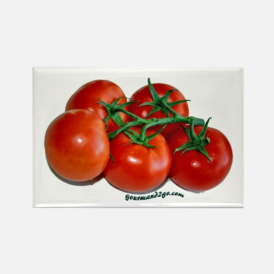 Vine Tomatoes Rectangle Magnet (10 pack)
