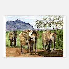 African Elephants of Kenya Postcards (Package of 8