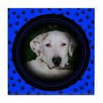 Your Pets Photo Here! Tile Coaster