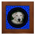 Your Pets Photo Here!  Framed Tile