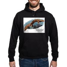 Giant Chinese Salamander Hoodie