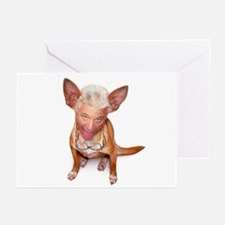 FREAKY LITTLE DOG Greeting Cards (Pk of 10)