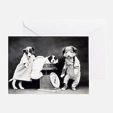 Funny animal photos Greeting Card