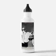 vintage dog parents ba Water Bottle