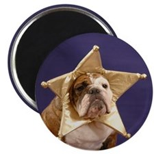 Chubby Star Magnet