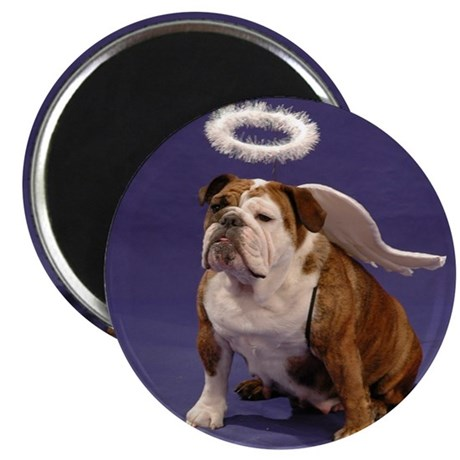 Chubby Angel-Blue Magnet