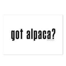 got alpaca? Postcards (Package of 8)