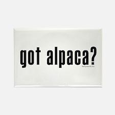 got alpaca? Rectangle Magnet (10 pack)