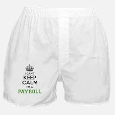 Unique Payroll Boxer Shorts