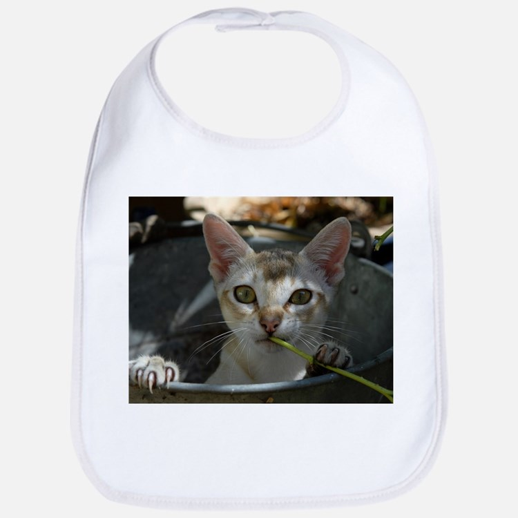 Singapura Cat Bib