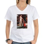 Accolade/Bull Terrier 1 Women's V-Neck T-Shirt