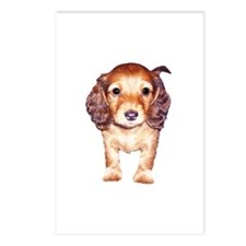 Long Haired Red Doxie Puppy Postcards (Package of
