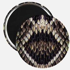 Eastern Diamondback Rattlesnake Magnets