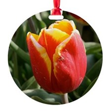 Yellow-Tipped Tulip Ornament