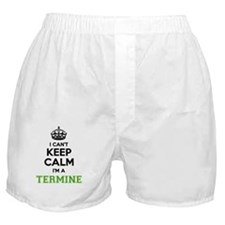 Cute Terminator Boxer Shorts