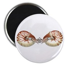 "Nautiluses 2.25"" Magnet (10 pack)"