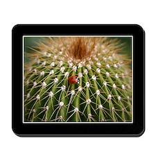 Ladybug on Cactus Mousepad