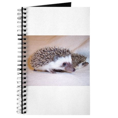 Double Trouble Hedgehogs Journal