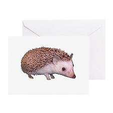 Davis the Hedgehog Greeting Cards (6)