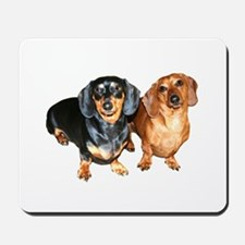 Double Dachshund Dogs Mousepad