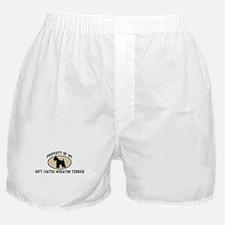 Property of Soft Coated Wheat Boxer Shorts