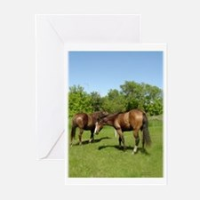 Horse Lovers PMU  Greeting Cards (Pk of 10)