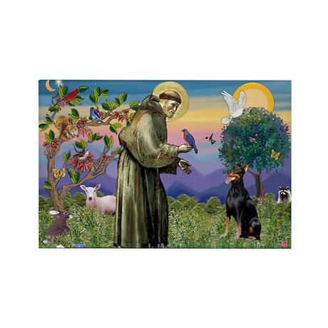 St. Francis Dobie Rectangle Magnet