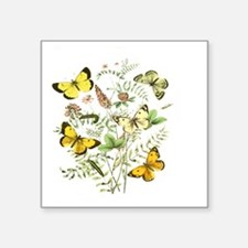 """French Butterflies Square Sticker 3"""" x 3"""""""