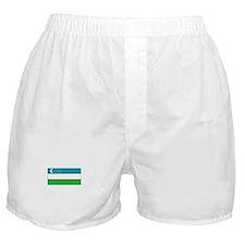 Uzbekistan Flag Boxer Shorts
