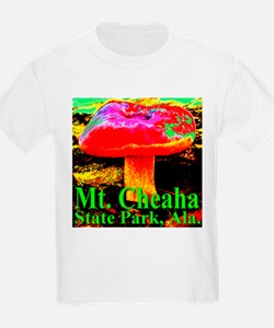 Mt. Cheaha State Park, Ala. T-Shirt