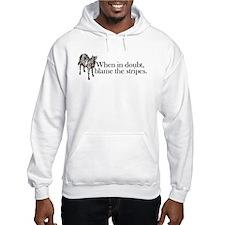 Hoodie Sweatshirt. When in doubt, blame stripes