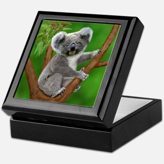 Blue-Eyed Baby Koala Keepsake Box