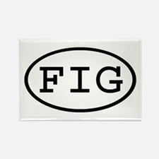 FIG Oval Rectangle Magnet