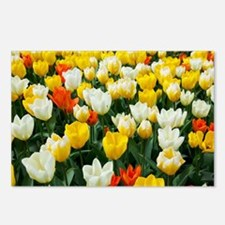 White, Yellow and Orange  Postcards (Package of 8)