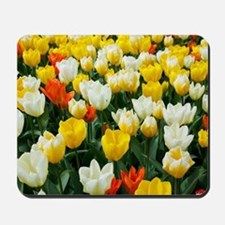 White, Yellow and Orange Tulips Mousepad