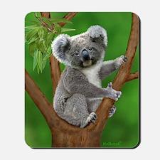 Blue-Eyed Baby Koala Mousepad