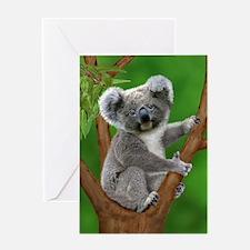 Blue-Eyed Baby Koala Greeting Cards