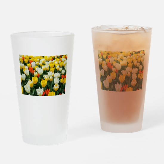White, Yellow and Orange Tulips Drinking Glass