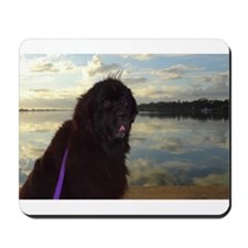Newfie River Reflections Mousepad
