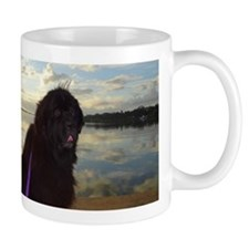 Newfie River Reflections Mugs