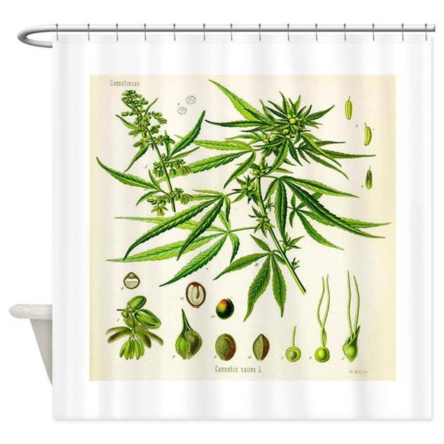 cannabis or hemp illustration shower curtain by grumpydude