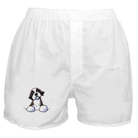 Pocket St. Bernard II Boxer Shorts