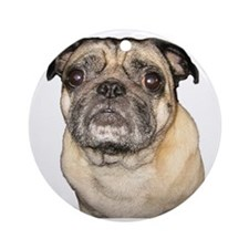Chewie the Pug Ornament (Round)