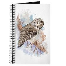 Watercolor Great Gray Owl Bird Nature Art Journal